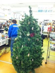 クリスマスツリりー出現 .。.:*・゜゚・*