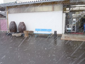 ★初積り!雪!雪!★