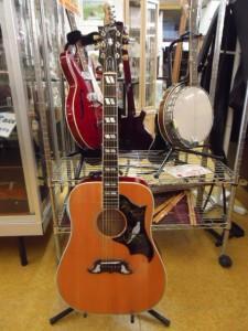 Gibson Dove/ギブソン・ダヴ アコースティックギター入荷しました♪